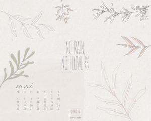 Concre_Wallpaper_Desktop_Mai